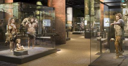 Neanderthalare och Cro-magnonmannen