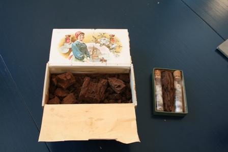 Träbitarna som kommer från gravkammaren i Kung Björns hög låg i en cigarrlåda på avdelningen för växtekologi