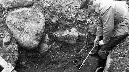 Arkeologisk utgrävning i Lycksele 1950. Foto: Karl Cajmatz/Västerbottens museum.