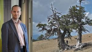 Huvudförfattaren Charpentier Ljungqvist Fredrik. Torkkänsliga tusenåriga träd från bergen i Grekland.