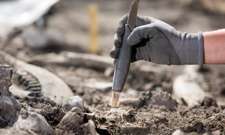 Snart dags för årets Arkeologidag