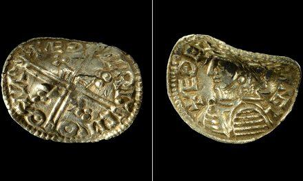 Ovanligt vikingatida myntfynd utanför Linköping