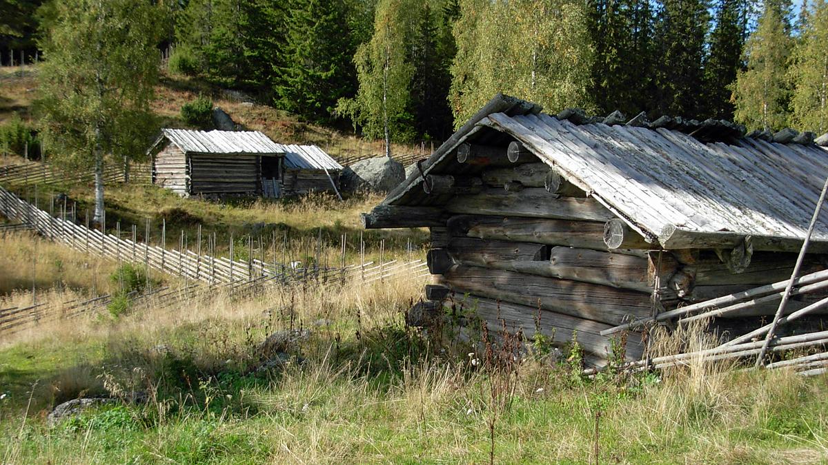 Ärteråsens fäbodar. Foto: Stiwed (Wikimedia Commons)