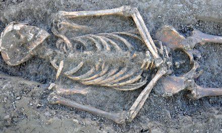 Medeltida skelett kan avslöja parasitplågor