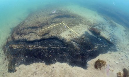 Stenåldersmiljöer på havsbotten kartlagda