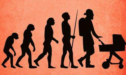 Svenskarna och deras fäder – de senaste 11 000 åren
