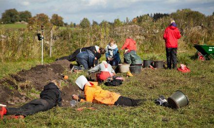 Utgrävning i Falköping avslöjar stenålderns jordbruk