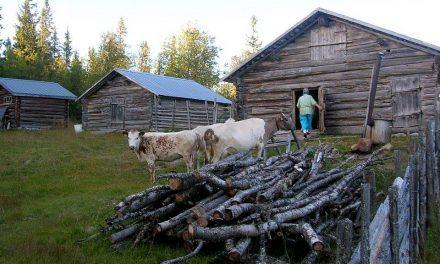 Kulturarvsdagar över hela Sverige i helgen