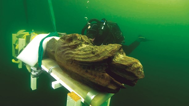 Gribshundens galjonsfigur bärgas. Foto: Ingemar Lundgren/Ocean Discovery