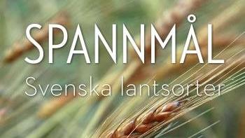 Svenskt spannmål