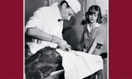 En berättelse om svensk djursjukvård