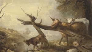 Kampen mot kreatursdöden under 1700-talet