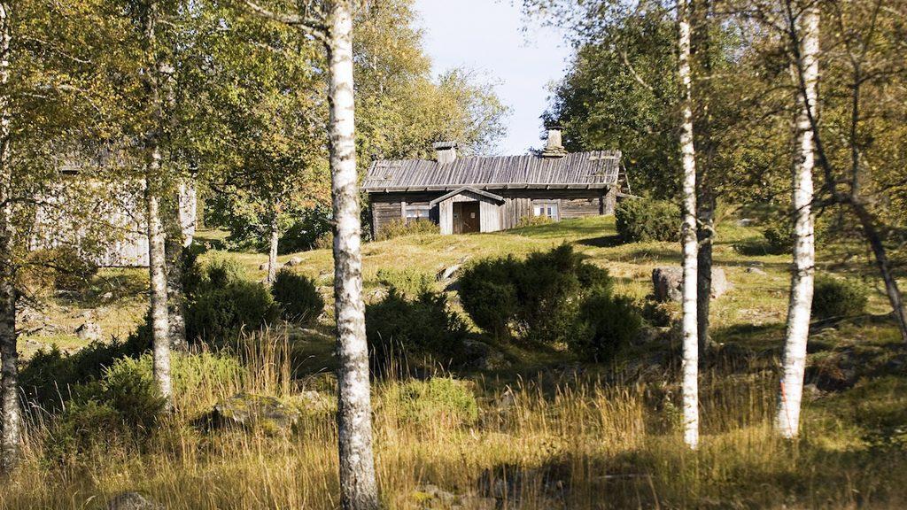 Ritamäki i Lekvattnet, norra Värmland. En av de bevarade finngårdar som finns med i den avsiktsförklaring om att göra Finnskogen till världsarv. Foto: Lars Sjöqvist/Värmlands Museum