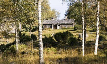 Värmlands landshövding vill att Finnskogen blir världsarv