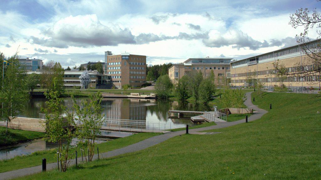 Umeå universitet. Foto: Mikael Lindmark (Wikimedia Commons CC-BY-SA-3.0)