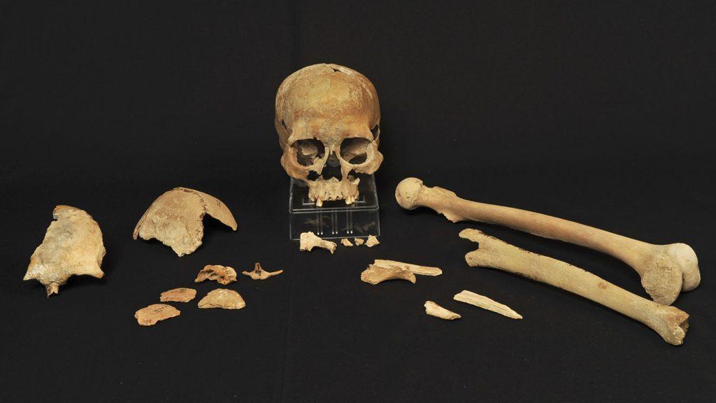 Skelettdelarna funna i Hummervikholmen i Vest-Agder 1994 visade sig vid en datering vara de äldsta som återfunnits i Norge. Foto: Beate Kjørslevik