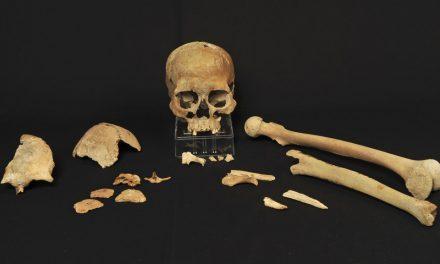 DNA-analyser avslöjar hur Skandinavien befolkades efter istiden