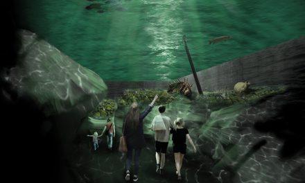 Ett marinarkeologiskt museum skapas i Stockholm
