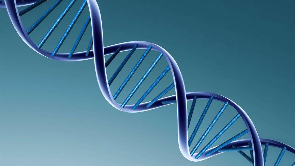 Polisen utreder DNA-släktforskning som metod för att lösa brott