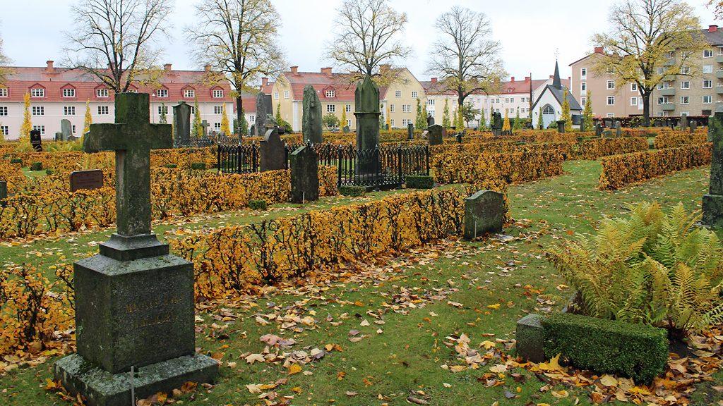 Södra begravningsplatsen i Norrköping. Arkivbild: Peter Kristensson/Klingsbergs Förlag