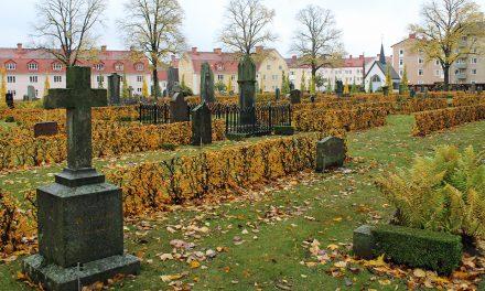 Allt blötare vintrar – ett hot mot gamla gravstenar