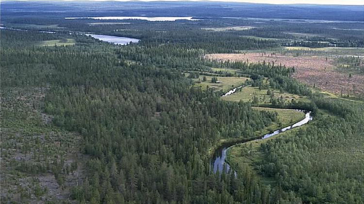 Vaikkijoki nordöst om Vivungi. Foto: Jan Norrman (CC BY 2.5 SE)