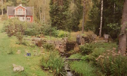 Järnsmedjor och smedjeströmmar i Sunnerbo