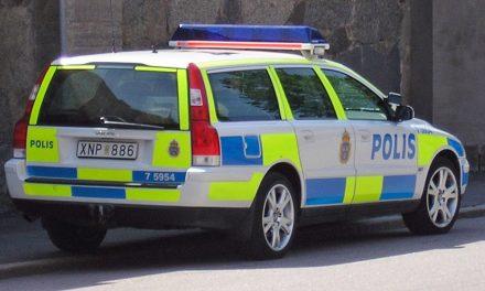 Släktforskare ska leda polisen till mördare