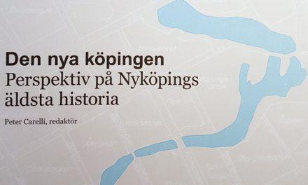 Perspektiv på Nyköpings äldsta historia