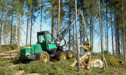 Fornlämningar körs sönder av skogsmaskiner