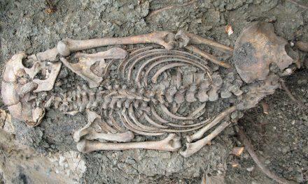 Ny studie visar på långväga inflyttning till vikingatidens Sigtuna