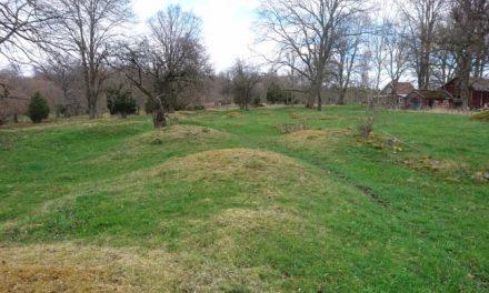 Närkes största gravfält grävs ut i höst