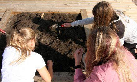 Arkeologiskola för femteklassare startas i Skåne