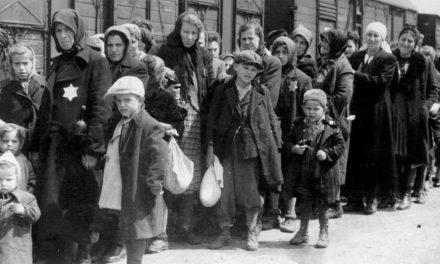 Första studien om barnbarnen till nazismens offer