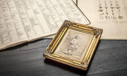 Känt Linnéporträtt åter i Sverige