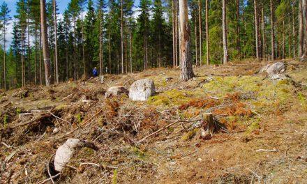 Länsstyrelsen i Jönköping anmäler fler fornminnesbrott
