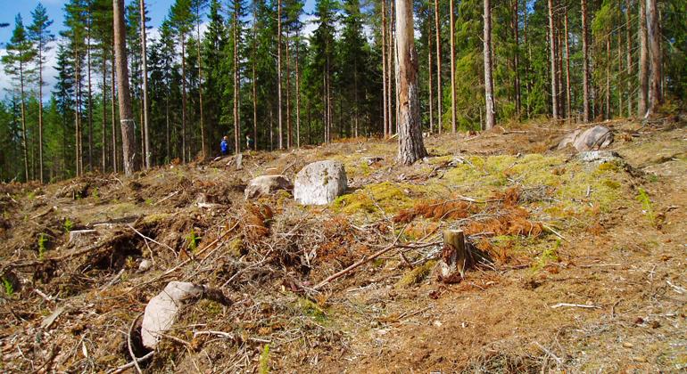 Skadat järnåldersgravfält i Månsarp. Foto: Länsstyrelsen i Jönköpings län