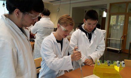 Gymnasieelever tar bort järn ur trä från Vasa