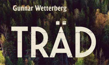 En historisk vandring i den svenska skogen