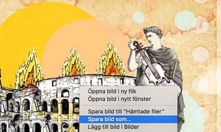 Undersökning av hur historia skapas på nätet