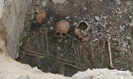 Fyra skelett hittade i centrala Västerås