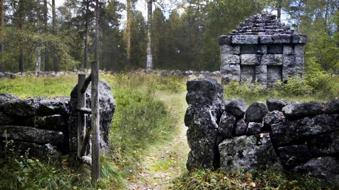 Gamla begravningsplatsen i Lycksele. Foto: Skogsmuseet i Lycksele