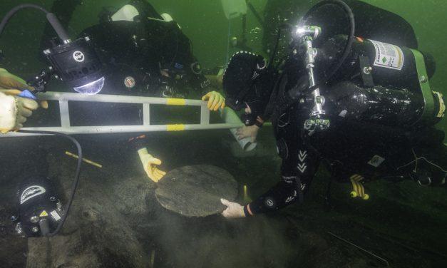 Spektakulära fynd under utgrävningen av Gribshunden
