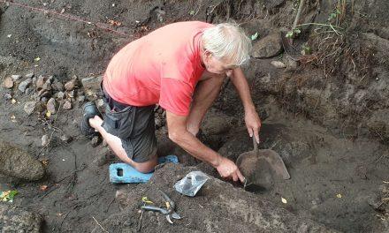 Volontärer grävde i stenåldern