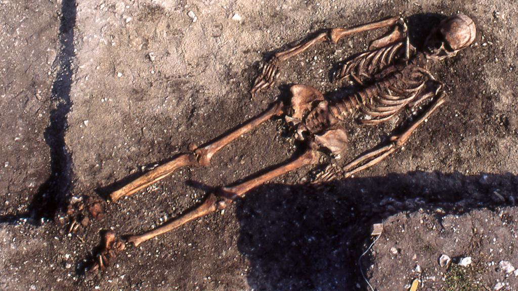 Man från gravfältet Ajvide på Gotland. Foto: Göran Burenhult