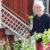 Studie om hur kulturminnesmärkta trädgårdar bäst bevaras