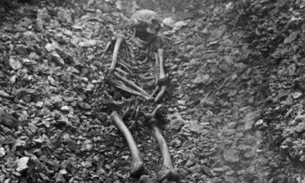 Smittkoppor kan ha varit vanligt redan på vikingatiden