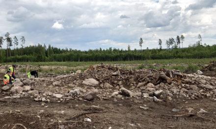 Gravrösen utgrävda utanför Växjö