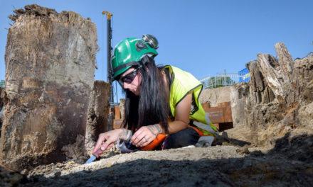 Arkeologins dag firas på söndag