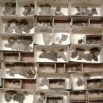 Fornfynd strömmar in – museer svämmar över av föremål